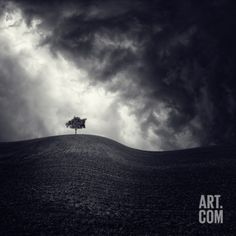 size: Photographic Print: Luis Beltran Poster by Luis Beltran : Fine Art Alone Photography, Rustic Photography, Fantasy Photography, Stunning Photography, Fine Art Photography, Landscape Photography, Buy Prints, Canvas Prints, Black And White Photography