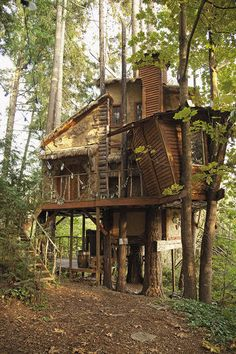 """VICTOR BROTHERS TREEHOUSE, WESTERN WASHINGTON Complete with a round """"hobbit door,"""" this house of maple, Douglas fir, and hemlock trees was made by the three Victor brothers, all in their twenties, after the first treehouse they built at this location burned down. Inside, there's a music room, a full bar, and five TVs. © PETE NELSON"""