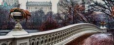 Central Park - Puente Bow by Carlos Manuel Pineros Gonzalez on 500px