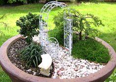 miniture gardens | Conifers | The Mini Garden Guru - Your Miniature Garden Source | Page ...