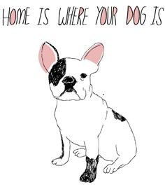 Home is where your dog is.