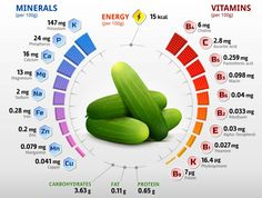 16 Health Benefits of Cucumber – History, Facts, Recipes, Side Effects etc. – Basic Health Tips Nutrition Chart, Health And Nutrition, Nutrition Store, Health Vitamins, Fitness Nutrition, Health And Fitness Tips, Health Tips, Cucumber Health Benefits, Cucumber Nutrition Facts