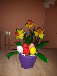 Eggs, Breakfast, Plants, Food, Morning Coffee, Essen, Egg, Meals, Plant