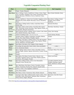 vegetable-companion-planting-chart-theculvers by sodj49v via Slideshare