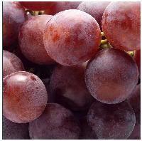 sapereconsapore: Danni cardiaci da obesità: un aiuto dai semi d'uva...