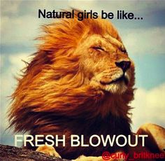 MY GUILTY PLEASURE: NATURAL HAIR MEMES