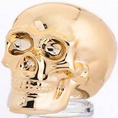 Where to hide that pirate booty? In a gold skull money box of course!
