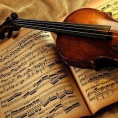 violino....