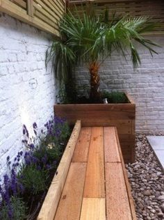 Small courtyard ideas--might consider having courtyard flowers match potted plants