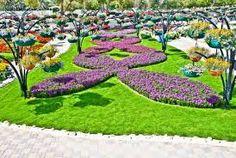 dubai miracle garden - Google Search
