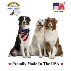 Treat your dog to Grain Free, Crunchy Turkey Sticks & Support our Troops! We donate a portion of proceeds to train service dogs for wounded veterans, our military heroes! http://www.greenbutterflybrands.com/