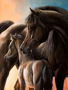 Gorgeous Dark Bay Arabian Mare With Her Bay Foal Standing Close Beside. Horse Pictures, Pictures To Draw, Pretty Horses, Beautiful Horses, Arabian Art, Arabian Horses, Horse Artwork, Horse Face, Horse Portrait