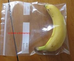 SCIENTIFIC METHOD INTRO LESSON~  Use bananas to introduce students to the scientific method using bananas.  Lesson description and free printable science journal worksheet.