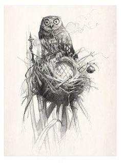 Jean Baptiste Monge - Protective owl