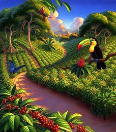 levkonoe | Robin Moline/ Coffee Plantation
