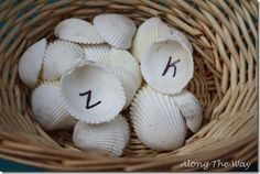 Aiden LOVES sea shells! He loves to sort them, hide them and just look at all the different kinds of shells. Since he is loving shells rig...