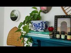Wall Planters - ApolloBox