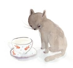 cat, cup of tea, fish, illustration, mis capricho