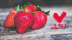 As we reach the half way point in our Veganuary journey, here is what members of our team who are taking part have learnt so far. #vegan #veganism #Veganuary