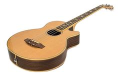 4 STRING ACOUSTIC/ELECTRIC BASS