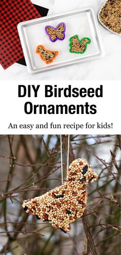 Mar 2020 - These easy DIY Birdseed Ornaments attract a wide variety of wild birds and only need 3 ingredients. Perfect for kids to make at home or in the classroom! Spring Crafts For Kids, Easy Crafts For Kids, Easy Diy Crafts, Christmas Crafts For Kids, Toddler Crafts, Projects For Kids, Diy For Kids, Fun Crafts, Rope Crafts