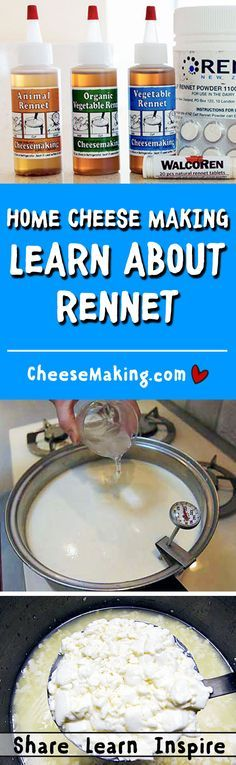 for Cheese Making FAQ Make Cheese at Home! This article explains what you need to do, the equipment and ingredients you need, and how to get started on making your own cheese. Rennet for Cheese Making FAQ Goat Milk Recipes, No Dairy Recipes, Cheese Recipes, Cheese Dips, Dip Recipes, Cheese Cave, How To Make Cheese, Food To Make, Making Cheese
