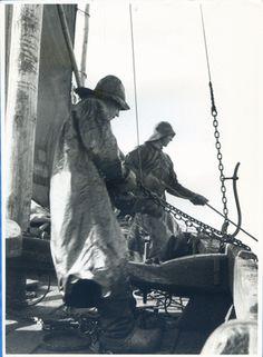 Kurisches Haff, Kurenfischer V