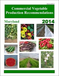 maryland vegetable planting calendar