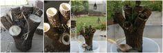 Centro de mesa: ANTES, DURANTE Y DESPUÉS, reciclado de troncos y cactus.