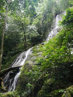 Waterfall in the Korup Rainforest. Ghana Culture, African Rainforest, Places To Travel, Places To Visit, Seychelles, Uganda, Africa Travel, Culture Travel, West Africa