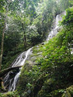 Waterfall in the Korup Rainforest. Cameroon, Africa