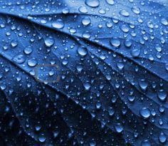 Water drops on a leaf (from - http://www.google.com.au/imgres?q=images+of+water+drops=en=X=isch=f-hIJrE9xEVDtM:=http://www.crestock.com/image/926311-Water-Drops-on-Blue-Plant-Leaf.aspx=9nVAaj9IwihKfM=340=296=AoI7TqukPM3umAWK7p3SAg=1=hc=361=181=312=209=241=136=102=2=140=151=18=18=1t:429,r:13,s:18=1312=635)