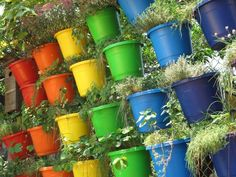 Use vibrant colors for your pots to add more color to your garden.