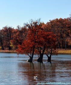 Clear Lake, LaPorte, Indiana October 25, 2014 http://photos.maxfieldcreations.com