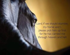 Lord, if we should stumble, my horse and I, please pick him up first for he has carried me through Heaven and hell. My Horse, Horse Girl, Horse Love, Horse Tack, Equine Quotes, Equestrian Quotes, Rider Quotes, Funny Horses, Cute Horses