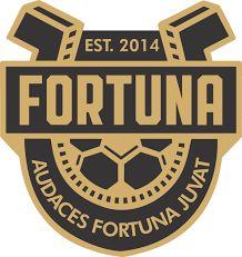 Sports Logo, Soccer, Football, San, Sportswear, Coat Of Arms, Sports, Futbol, Futbol
