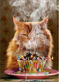 Details about Birthday Cupcake Funny Birthday Card Greeting Card by Avanti Press - Happy Birthday Funny - Funny Birthday meme - - By Avanti Press. Printed on Recycled Paper. Happy Birthday Funny, Happy Birthday Quotes, Cat Birthday, Happy Birthday Images, Happy Birthday Greetings, Animal Birthday, Birthday Pictures, Birthday Messages, Funny Birthday Cards