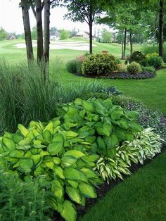Landscaping ideas for front yards and backyards should not be ignored. Before you start designing your front yard and backyard, you must create an inventory of on your front- and backyard space. As…MoreMore  #LandscapingFrontYard