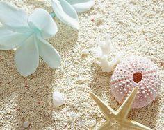 壁紙*白い砂浜の画像 プリ画像