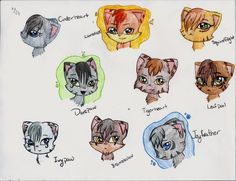 warrior cats | Warrior Cats 1 by ~Emberlily216 on deviantART