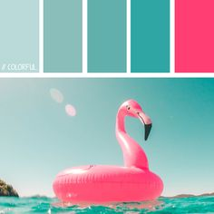 // COLORFUL. 0002 - PHOTOCREDIT:  UNSPLASH @vicko #kleur #kleurpaletten #kleurpallet #color #colorpalette #colorpalletes #colour #colourpalette #colourpalettes