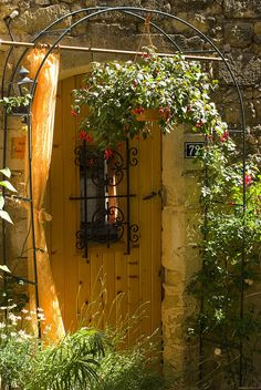 Coloful Provence
