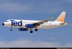 Ted N485UA aircraft at Las Vegas - McCarran Int photo