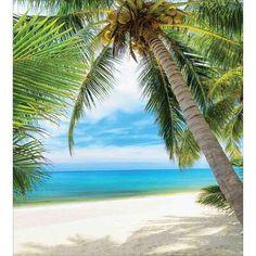 Tropical Beaches In California Photography Studio Background, Photography Backdrops, Beach Photography, Food Photography, Photography Movies, Photography Composition, Photography Backgrounds, Photography Studios, Photography Marketing
