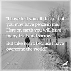 John 16:33 #AudaciousVerse #Bible #Verse Our peace is found in Jesus!! Not in man, not in this world. Take heart, because with Jesus, you never face the trials on you own!!!