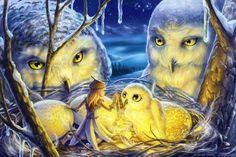 The art portfolio of fantasy artist and children's book illustrator Laura Diehl. Laura specializes magic kids art, middle grade illustration, and magical realism. Freelance and custom book art. Magical Creatures, Fantasy Creatures, Fantasy Kunst, Fantasy Art, Fantasy Fairies, Josephine Wall, Digital Art Gallery, Owl Family, Fairytale Art