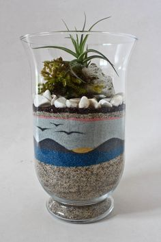 Coloured sand art with Tillandsia/Airplant on a pumice and moss.