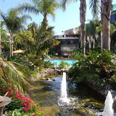 You get the best of both worlds at the #marriottmarquissd... a tropical oasis in bustling downtown #SanDiego.