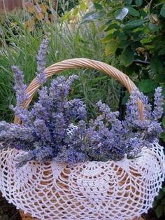 .Doily and lavender :):)