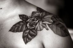 Alice Carrier | hold on, magnolia #floral #tattoo #ink
